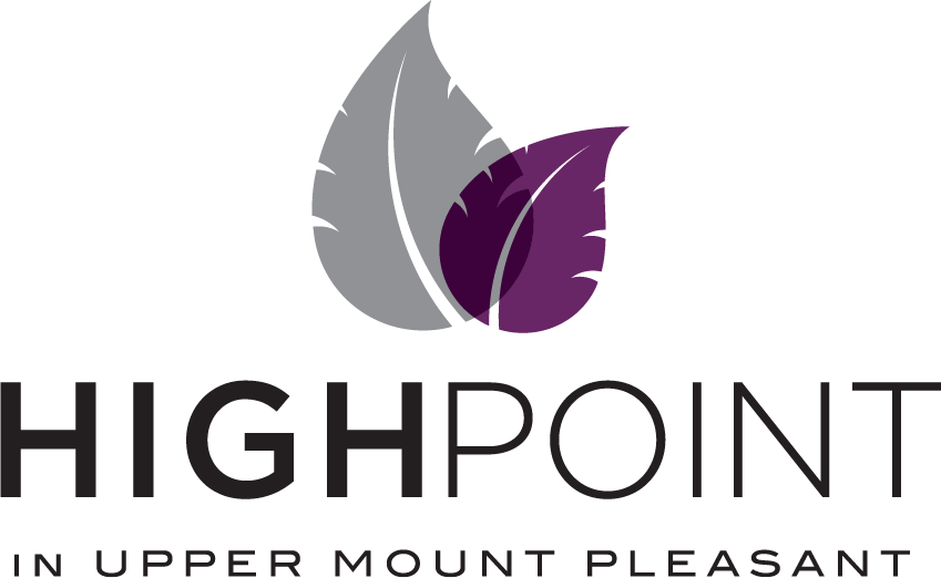 Low Rise, Paradise Developments, High Point, Logo